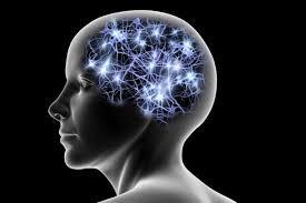 Déprogrammer la mémoire cellulaire grâce à l'Écoute Imaginaire